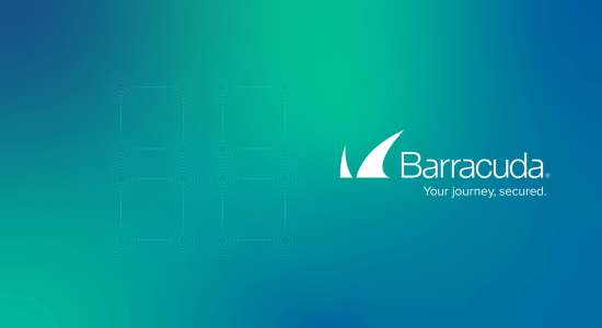 Barracuda Networks extends agency partnership with Rareview.