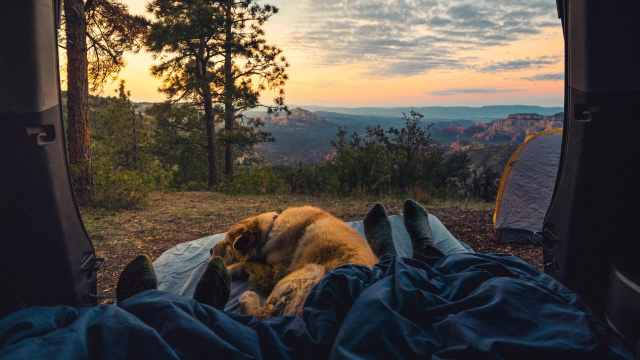 Family and dog camping in nature