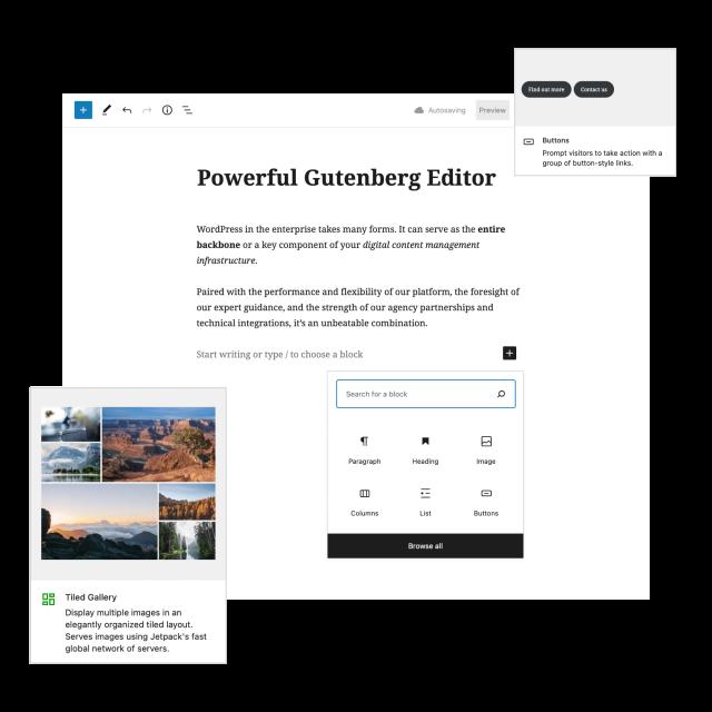WordPress Gutenberg Editor with blocks